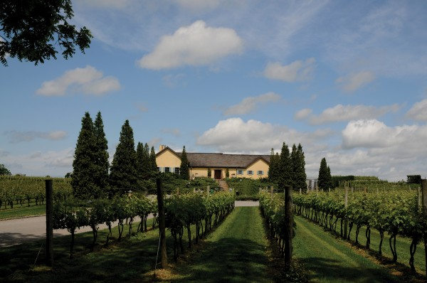 long-view-of-front-of-winery-nice