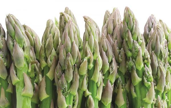 asparagus_opt