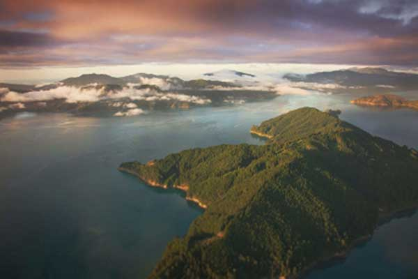 Marlborough-Sounds-3
